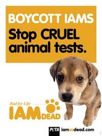 Iams Dog Food Killing Dogs