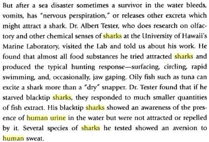 Shark text