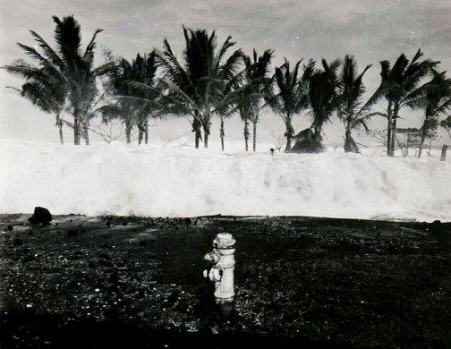 tsunami surge hawaii island