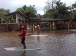 Paddleboard Floods Honolulu Zoo [Hans Hedemann]