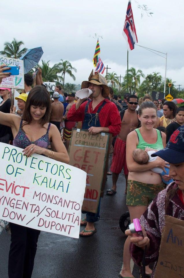 kauai | Coconut Girl Wireless