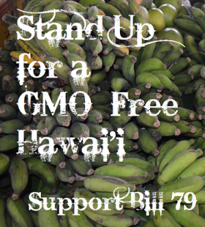 GMO Hawaii Bill Hearing